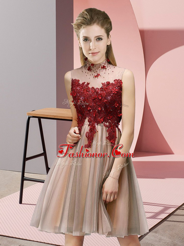 Dramatic High-neck Sleeveless Court Dresses for Sweet 16 Knee Length Appliques Pink Tulle