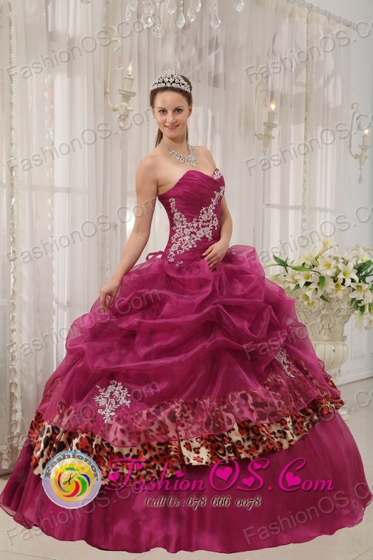 98b5c74812f Buin Chile Popular Burgundy Quinceanera Sweetheart Organza and Leopard or  zebra Appliques Ball Gown Dress Style QDZY398FOR