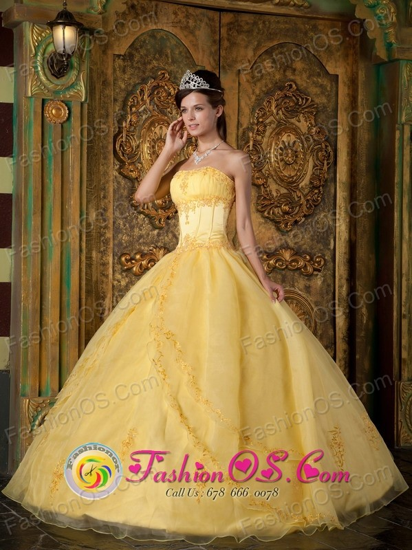 Appliques Decorate Yellow  Wholesale 2013 Quinceanera Dress In New York Strapless Organza Ball Gown In Union Paraguay  Style QDZY088FOR