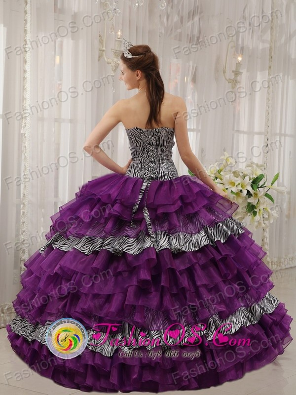 Customize Zebra and Purple Organza With shiny Beading Affordable ...