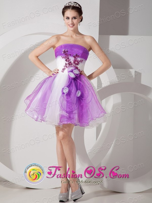 Sy Purple And White A Line Mini Length Organza Prom Dress Hand Made Flowers Feature In Riberalta Bolivia Style Mlxnhy07for