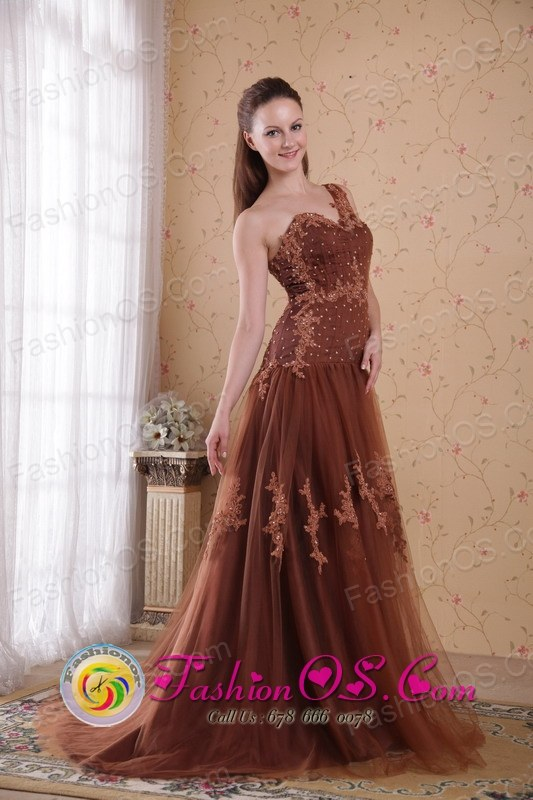 Traralgon VIC Wholesale Tulle One Shoulder Dama Dresse Brown Sheath Brush Appliques and Beads For 2013 Summer Style PDHXQ186139FOR