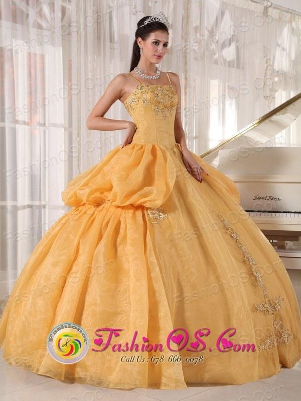2013 Mendoza Argentina Fall Quinceanera Dress With Spaghetti Straps ...