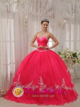 Nueva Gerona Cuba Stylish Wholesale Fushia Sweetheart Appliques Decorate 2013 Sweet sixteen Dresses Party Style for ormal Evening Style QDZY566FOR