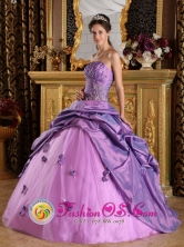 Lavender Quinceanera Dress For 2013  Hand Made Flowers Appliques Stylish Strapless Taffeta  IN Santa Tecla   El Salvador Style QDZY198FOR