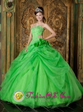 Spring Green Hand Made Flowers Appliques Decorate Fabulous Quinceanera Dress For 2013 IN San Salvador    El Salvador Style QDZY196FOR