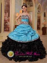 2013 Ayutla Guatemala Safford strapless Aque Blue and Black Zebra Ruffles and Sash Quinceanera Dresses With Pick-ups For  Graduation Style QDZY434FOR