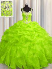 Stunning See Through Zipper Up Zipper 15th Birthday Dress Appliques and Ruffles Sleeveless Floor Length