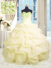 Attractive Organza Sleeveless Floor Length Quinceanera Gown and Beading and Ruffles
