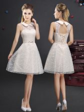 Dazzling Lace Sleeveless Knee Length Dama Dress and Lace and Appliques