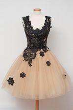 Sleeveless Tulle Knee Length Zipper Dress for Prom in Champagne with Appliques