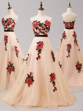 Sweetheart Sleeveless Brush Train Zipper Prom Gown Champagne Tulle