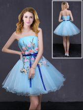 Baby Blue Sleeveless Appliques and Belt Mini Length Evening Dress