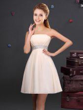 Strapless Sleeveless Chiffon Dama Dress for Quinceanera Sequins and Ruching Zipper