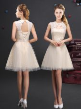 Tulle Sleeveless Mini Length Vestidos de Damas and Lace and Appliques and Belt