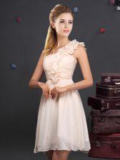 Champagne One Shoulder Neckline Ruffles and Ruching Dama Dress Sleeveless Zipper
