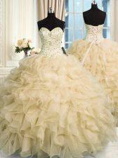 Wonderful Sweetheart Sleeveless Organza 15th Birthday Dress Beading and Ruffles Lace Up