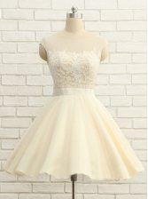 Great Scoop Cap Sleeves Organza Evening Dress Lace Zipper