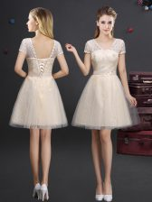 Tulle V-neck Short Sleeves Lace Up Lace and Appliques and Belt Dama Dress in Champagne