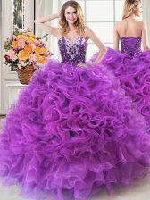 Affordable Ball Gowns 15 Quinceanera Dress Eggplant Purple Sweetheart Organza Sleeveless Floor Length Lace Up