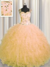 Eye-catching See Through Zipper Up Gold Sleeveless Tulle Zipper 15th Birthday Dress for Military Ball and Sweet 16 and Quinceanera
