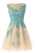 Champagne Zipper Prom Party Dress Appliques Sleeveless Mini Length