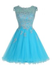 Smart Baby Blue A-line Organza Scoop Sleeveless Beading and Appliques Mini Length Zipper Prom Dresses