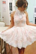 Champagne Sleeveless Tulle Zipper Homecoming Dress for Prom and Party