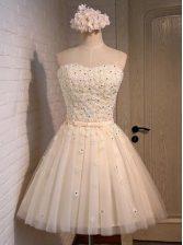 Mini Length Champagne Prom Dress Organza Sleeveless Appliques