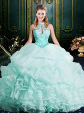 Halter Top Clasp Handle Organza Sleeveless 15th Birthday Dress Brush Train and Beading and Lace and Ruffles