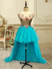 Adorable Baby Blue Organza Lace Up Evening Dress Sleeveless High Low Embroidery