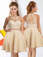 Artistic Champagne Lace Zipper Dama Dress Sleeveless Knee Length Lace