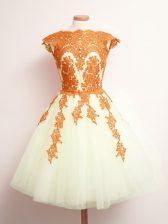 Appliques Quinceanera Court Dresses Multi-color Lace Up Sleeveless Mini Length