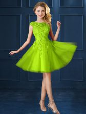 Modest Yellow Green Cap Sleeves Tulle Lace Up Quinceanera Court of Honor Dress for Prom and Party