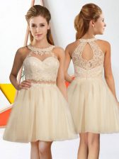 Chic Sleeveless Lace Zipper Quinceanera Court of Honor Dress