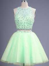 Cheap Scoop Sleeveless Lace Up Quinceanera Court of Honor Dress Yellow Green Tulle