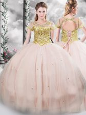 Delicate Floor Length Pink Quinceanera Gown Scoop Short Sleeves Lace Up