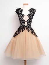 Delicate Knee Length Champagne Damas Dress Straps Sleeveless Lace Up