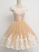 Knee Length A-line Cap Sleeves Champagne Quinceanera Dama Dress Zipper