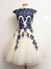 Blue And White Sleeveless Tulle Lace Up Damas Dress for Prom and Party and Wedding Party