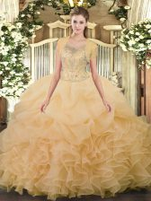 Dramatic Floor Length Ball Gowns Sleeveless Champagne 15 Quinceanera Dress Clasp Handle