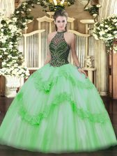 Chic Lace Up Halter Top Beading and Appliques Ball Gown Prom Dress Taffeta and Tulle Sleeveless