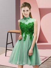 Fantastic Tulle High-neck Sleeveless Lace Up Appliques Court Dresses for Sweet 16 in Apple Green
