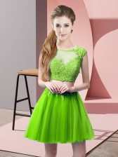 Traditional Two Pieces Tulle Scoop Sleeveless Appliques Mini Length Zipper