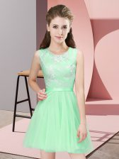 Scoop Sleeveless Side Zipper Quinceanera Dama Dress Apple Green Tulle