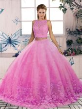 Delicate Tulle Sleeveless Quince Ball Gowns Sweep Train and Lace