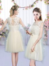 Captivating Sleeveless Mini Length Lace and Bowknot Lace Up Quinceanera Court of Honor Dress with Champagne