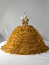Dazzling Organza Sleeveless Quinceanera Dress and Beading