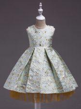 Flare Sleeveless Mini Length Embroidery Toddler Flower Girl Dress