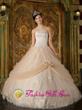 2013 La Paz Mexico Hand Made Flower and Appliques Decorate Strapless Bodice Champagne Ball Gown Quinceanera Dress Style QDZY121FOR